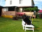 Скачать изображение  Сдам уютную дачу для отдыха в Святогорске, 37266687 в Артемовске