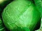 Уникальное изображение Разное Картофель и овощи от производителя, 36590800 в Барнауле