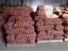 Фото в Прочее,  разное Разное Реализуем картофель оптом от производителя. в Барнауле 7