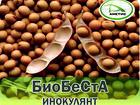 Уникальное фото Разное «БиоБеСтА» – микробиологическое удобрение для сои (инокулянт) 39521274 в Благовещенске