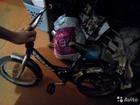 Изображение в Для детей Товары для новорожденных Продам велосипед все вопросы по телефону в Братске 1000