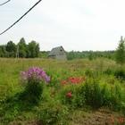 Аренда сельхозугодий 20ГА в Калужской области