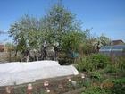 Смотреть фото Земельные участки Продаётся сад в СНТ тракторосад 3 67713631 в Челябинске