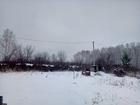 Скачать foto Сады Продам зрелый сад с домом и баней 68864994 в Челябинске