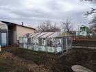 Свежее изображение Сады продам сад в снт авиатор 69815304 в Челябинске