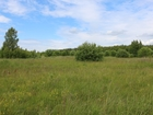 Смотреть изображение Дома Земельный участок 15 соток в деревне Верейка 67709773 в Егорьевске