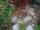 Просмотреть изображение Дома Дом 200 кв, м, на улице Поселковая 7 соток ИЖС 71127434 в Егорьевске