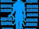 Просмотреть фотографию Медицинские приборы Профессиональная система диагностики и лечения организма 32737156 в Санкт-Петербурге
