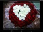 Увидеть изображение  цветы, комнатные растения,подарки 34730886 в Гурьевске