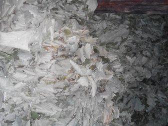 Уникальное фотографию  Продам веники дубовые банные(добрые) 34277744 в Хабаровске