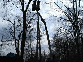 Новое фотографию Другие строительные услуги Спил, валка и кронирование деревьев 67712711 в Хабаровске