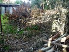 Фотография в Строительство и ремонт Другие строительные услуги Расчистка участка включает в себя рубку деревьев, в Щелково 0