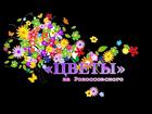 Скачать бесплатно foto  Цветы Ишим 34242828 в Ишиме