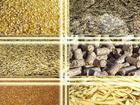 Изображение в   продаю корма, зерновые, Пшеницу, 16 год овёс, в Иваново 5