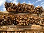 Уникальное фотографию  Дрова, тюльки, горбыль, опил 69035911 в Ижевске