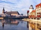 Свежее фото Турфирмы и турагентства Экскурсии по Калининградской области 37619042 в Калининграде