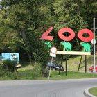Поездки в Зоопарк Гданьска