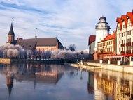 Экскурсии по Калининградской области Арена тур приглашает всех желающих на экску