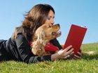 Новое фотографию Разное Дрессировка и воспитание собак в Набережных Челнах 34330966 в Казани