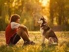 Увидеть фотографию  Дрессировка и воспитание собак в Альметьевске 39124799 в Казани