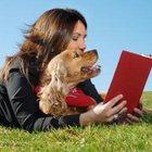 Дрессировка и воспитание собак в Набережных Челнах