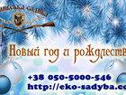 Уникальное фотографию  Новогодний отдых на базе отдыха в Полтавской области 37900924 в Киеве