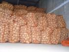 Новое изображение  Продам оптом картофель Гранада, Бэлла Росса 44426123 в Киеве