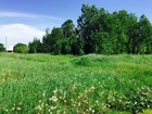 Увидеть фото Агентства недвижимости Недорого, Продам земельный участок 15 соток под ПМЖ, 120 км от москвы 38854386 в Кимрах