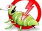 Скачать бесплатно изображение Разное Травля-выведение обработка от клопов тараканов  33985414 в Королеве