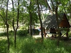 Уникальное изображение  Лов шемаи на Кубани летом и отдых 35982561 в Краснодаре