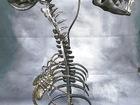 Уникальное фотографию  Скульптура креативная из металлаЧужой 67839814 в Краснодаре