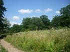 Просмотреть изображение  Уникальный земельный участок, 69037099 в Краснодаре