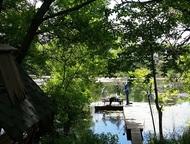 Рыбалка на сома в Динском районе и отдых летом База отдыха с рыбалкой ООО «Золот
