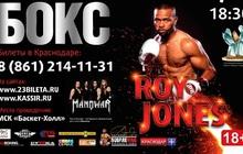 Краснодар профессиональный бокс