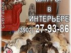 Изображение в   Продам ковер из шкуры медведя волка рыси в Абакане 0
