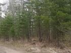 Фото в   Продам земельный участок для ценителей леса, в Красноярске 35000