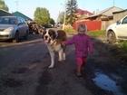 Увидеть фотографию  Ищет подружку 37630387 в Красноярске
