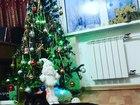Фото в Кошки и котята Вязка Демон ищет подругу для продолжения своего в Красноярске 0