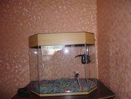 Аквариум 40 литров Продам аквариум 40 литров с помпой, на дне декоративные камуш