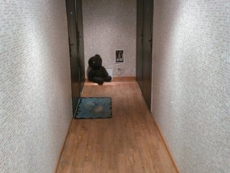 Смотреть изображение  Продам просторную гостинку в добротном кирпичном доме 33451317 в Красноярске