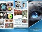 Фото в   Лечение глаз животных Ростов-на-Дону:  Внимание в Кургане 400