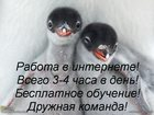 Фото в   Набираем сотрудников на должность Менеджер/Администратор в Томске 30000
