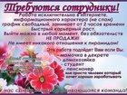 Фото в   Приглашаем сотрудников для работы в интернете в Москве 7