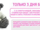 Скачать foto  Мишка Тедди (Teddy) бесплатно только 3 дня 34663858 в Вологде