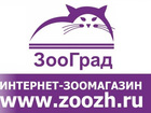 Смотреть фото  Интернет зоомагазин, Акция, Доставка по России 240 руб, 34689728 в Ижевске