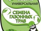 Свежее foto  Семена газонных трав 38497271 в Москве