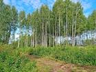 Скачать бесплатно изображение  Участок в КП Царское село, Смоленск, 70469283 в Смоленске