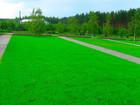 Уникальное изображение  Газон Воронеж и посев газона, укладка рулонного газона в Воронеже 76920732 в Кургане