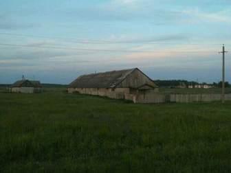 Увидеть фотографию  Продам землю с/х назначения, 3 гектара, Алаторка 61381415 в Тамбове