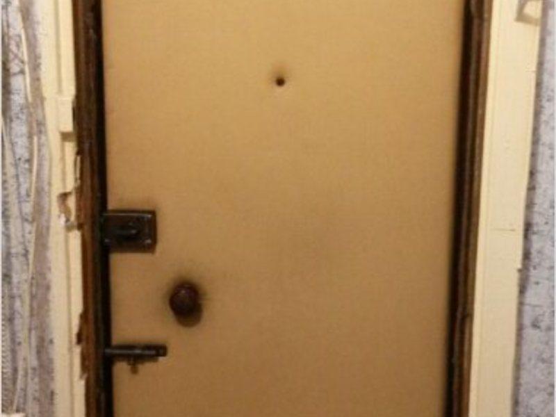 дверь металлическая высота 195 см